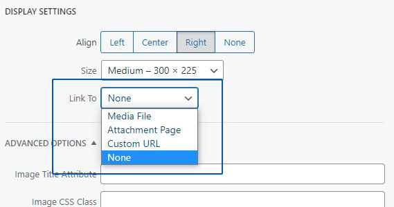 media link option in wordpress